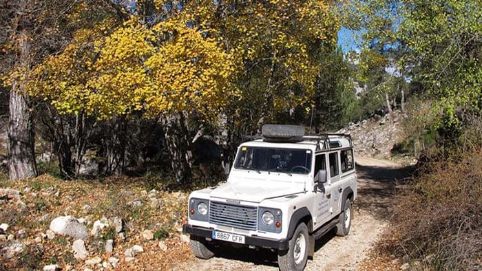 4wd routes