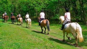 Horseback riding route of 4 or 5 hours