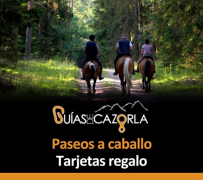 Tarjeta-regalo-Rutas-a-caballo