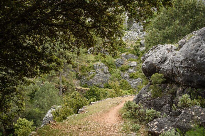 Fotografía de naturaleza en Cazorla