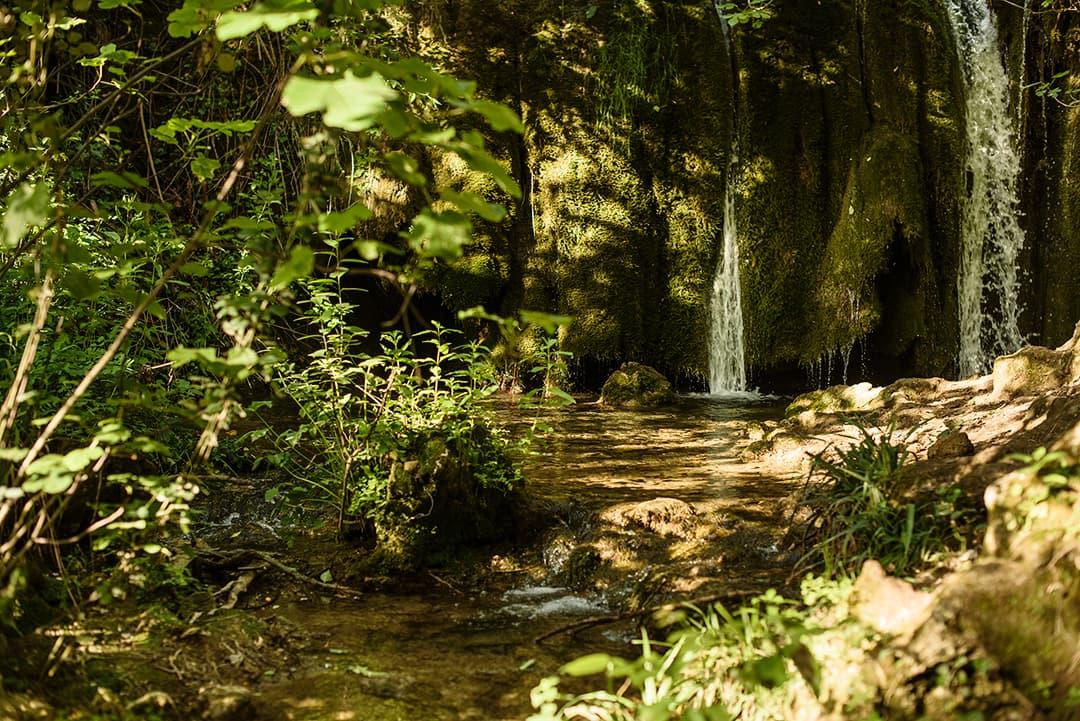 Curso fotografía en la naturaleza nivel intermedio